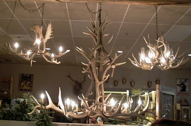 real-antler-chandeliers
